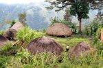 A Dani village
