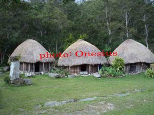 https://trek-papua.com/