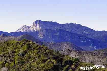 peak-trikora with Mac. Trikora peak guide, Wamena-Habema Lake, Trikora peak Mac Valley, Samelak Mac Cave, Trikora trip, Trikora Summit guide, Papua Guide Mac.