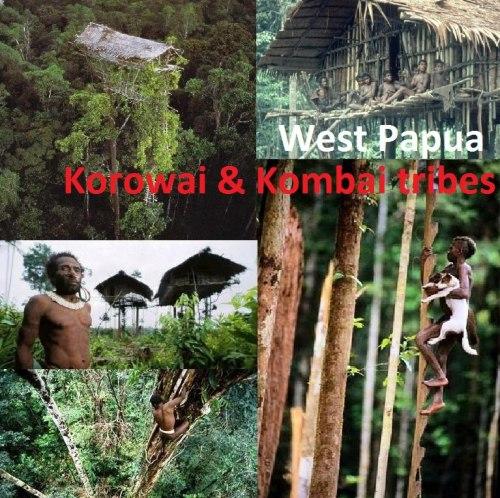 KOROWAI BATU, Papua selatan. rumah pohon, manusia pohon, hidup nomaden, papua melanesia