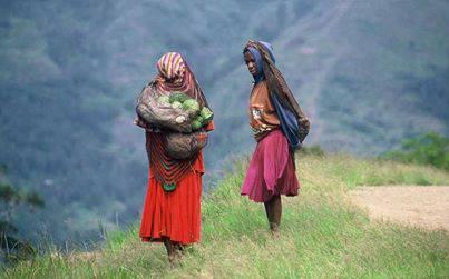 mama papua,Welcome to Raja Ampat Honeymoon www.rajaampathoneymoon.com