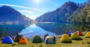 ARFAK BIRDING TRIP/2017 https://trek-papua.com/…/raja-ampat/arfak-montane-birding-…/ ---------------------------------------- E-mail: trekpapua@gmail.com