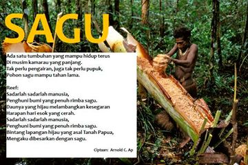 Sago cultivication,Papua, south east