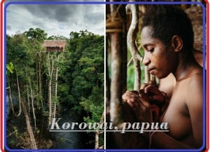 korwai-papua-TREK-PAPUA TOURS. LTD West Papua-half New Guinea western States Tourism HEAD OFFICE Jl. Bandara Sentani – Jayapura Papua District Headquarter - Sentani Land Line - +0967-591686 Mobile No - +62 81247628708 E Mail -info@Papuatravels.com / trekpapua@gmail.com Website: - www.papuatravels.com/ or www.trek-papua.com/ Skype -wasage3