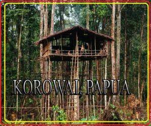 korwai-papua-TREK-PAPUA TOURS. LTD West Papua-half New Guinea western States Tourism HEAD OFFICE Jl. Bandara Sentani – Jayapura Papua District Headquarter - Sentani Land Line - +0967-591686 Mobile No - +62 81247628708 E Mail -info@Papuatravels.com / trekpapua@gmail.com Website: - www.papuatravels.com/ or www.trek-papua.com/ Skype -wasage3