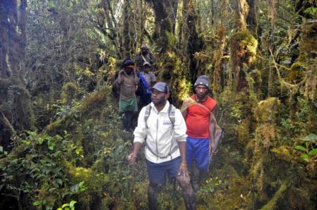 pure_jungle_approach_to_puncak_mandala.TREK-PAPUA TOURS & Travel Komp. Ruko Bandara Sentani Blok BB No.1, Sentani Jayapura–Papua, Melanesia ( Indonesia) Phone : ( +62 ) 591686 Mobile : + +62811481783 Email : info@papuatravels.com Website : www.trek-papua.com YM : wasagedemianus@yahoo.com https://www.facebook.com/rajaampateco.tours Land tour Operator trekking Papua Specialist.