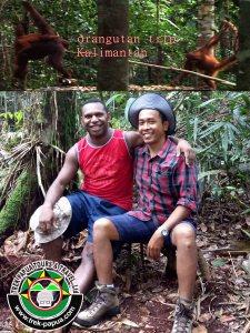 orangutan-trip-kalimantan-indonesia