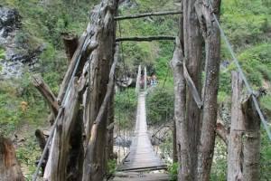 cultural-tour, Dani traditional bridge, Kilise village, Baliem valley trekking, Obia village, Syokosimo trekking, Sumpaima mr. Yali mabel. Jembatan kali baliem, Wamena-Dani tribe trekking