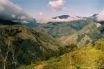 baliem valley treks(6)