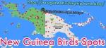 Birding in NewGuinea-Papua