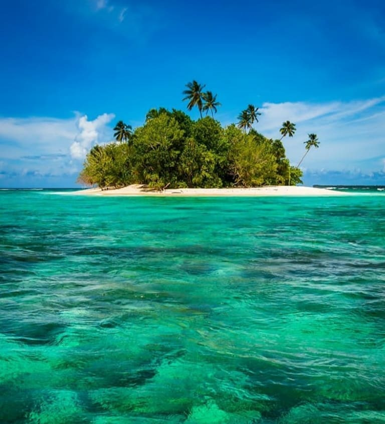 Solomon Islands Beach: Solomon Islands Birds Tour