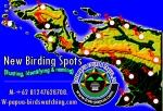 new birding spots