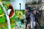Papua Images (24)