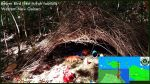 Arfak foothills-New Guinea birding2020