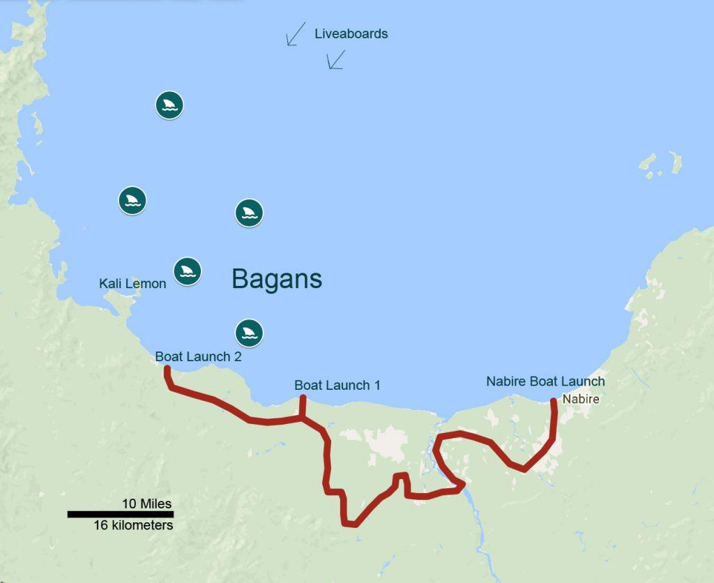 Whale Sharks Tour Papua | Trek Papua