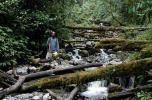 yali tribe trip-4
