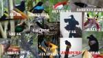 Arfak birds photography